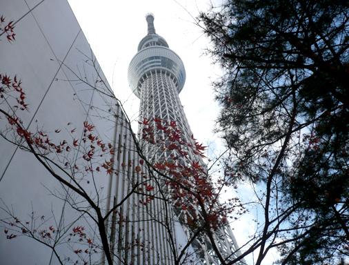 東京スカイツリー 2015,12