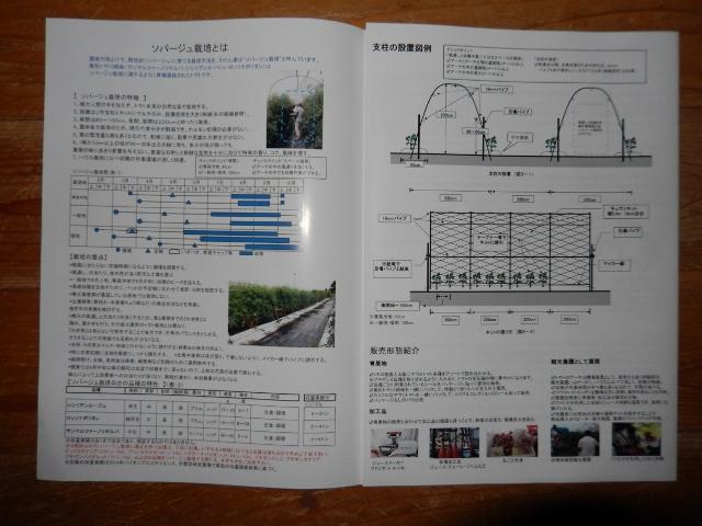 DSCN6368 (640x480)