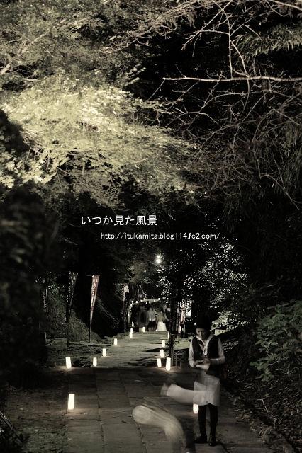 DS7_2633ri-s.jpg