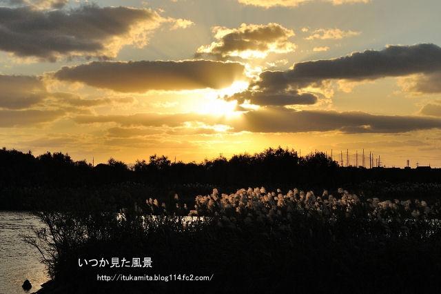 DS7_2947ri-s.jpg
