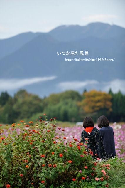 DS7_3839ri-s.jpg