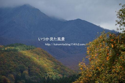 DS7_3904ri-ss.jpg