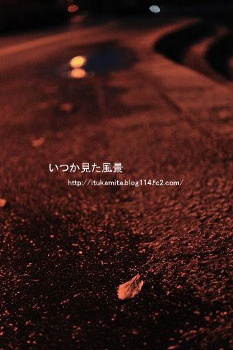 DS7_4916rri-ss.jpg