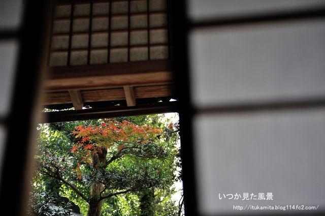 DS7_5359ri-s.jpg