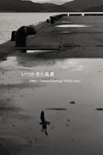 DS7_6380wi-ss.jpg