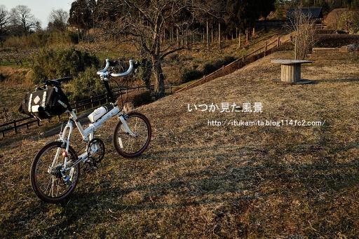 DS7_6685ri-ss.jpg