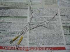 P1100528.jpg