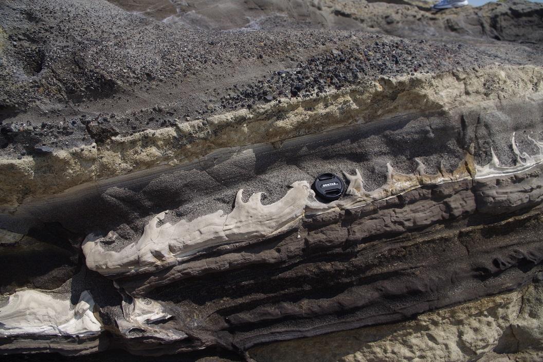 城ヶ島 付加体 地層観察 火炎構造 フレーム構造 海底地すべり 地震 断層 活断層Frame structure
