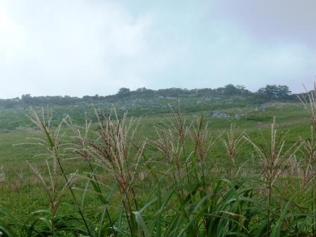 四国カルストの風景 2