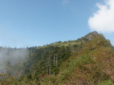 瓶ヶ森林道 風景 3