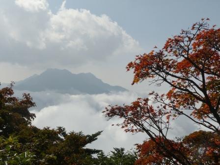 瓶ヶ森林道 風景 5