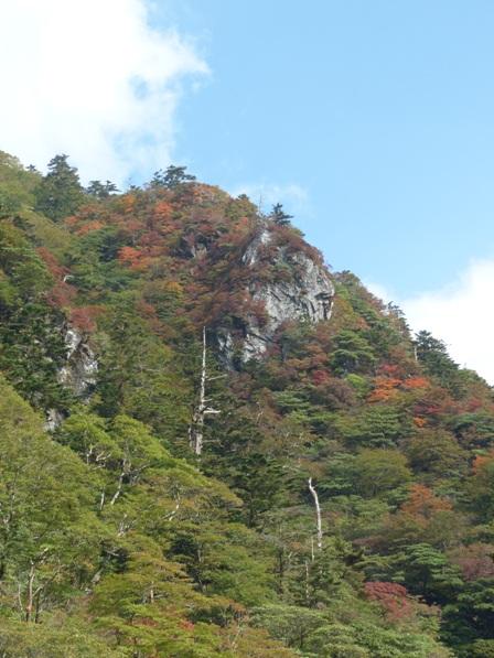 瓶ヶ森林道 少しの紅葉 6