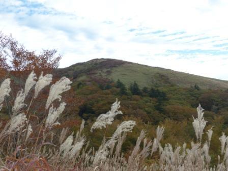 大川嶺付近からの景色 4