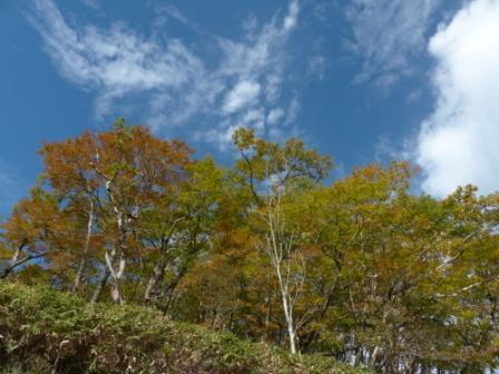 大川嶺付近からの景色 5