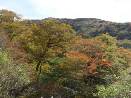 大川嶺付近からの景色 6