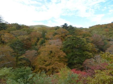 大川嶺付近からの景色 8