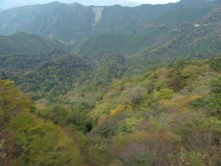 四国カルストの風景 8