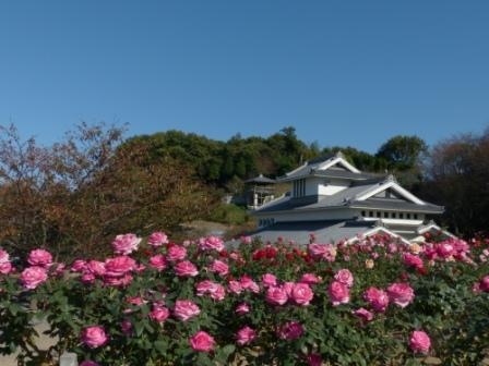 かわら館の建物とバラ 1