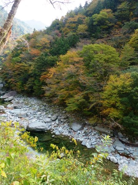 面河渓の紅葉 2