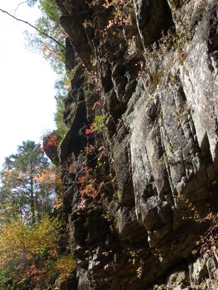 面河渓の紅葉 6