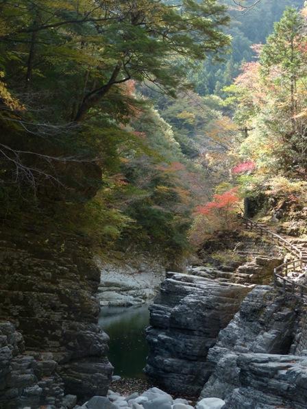 面河渓の紅葉 7