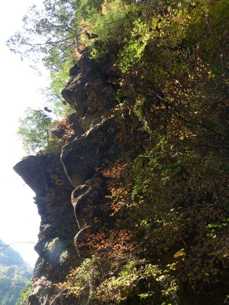 面河渓の紅葉 8