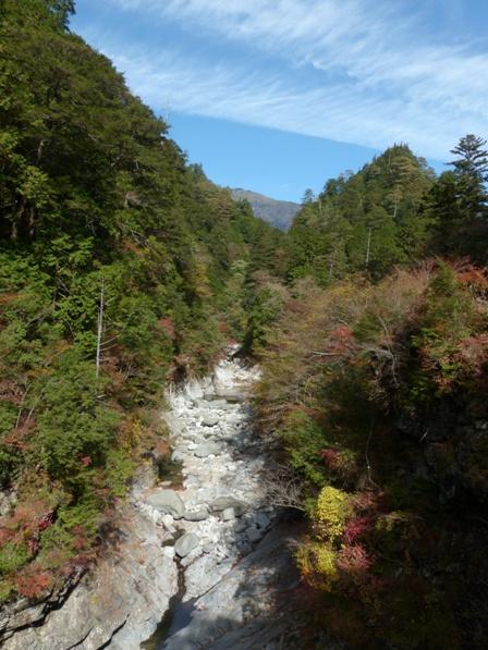 面河渓の紅葉 13
