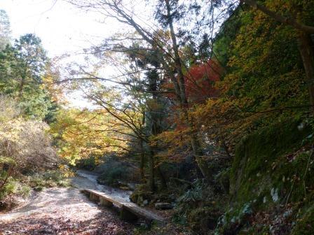 滑川渓谷の紅葉 2