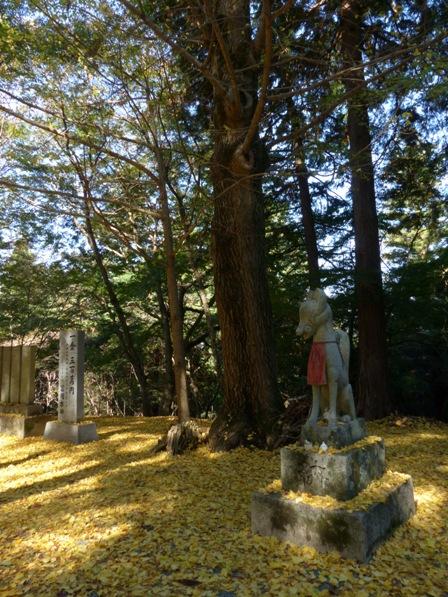 稲荷山公園の紅葉・黄葉 6