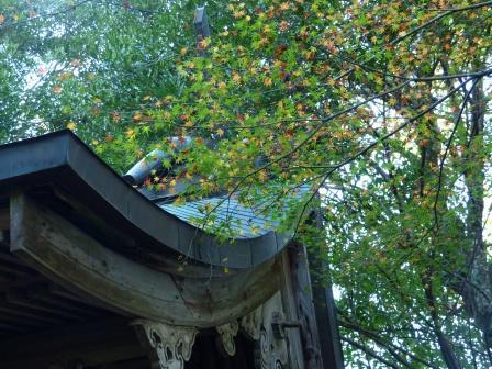 稲荷山公園の紅葉・黄葉 5