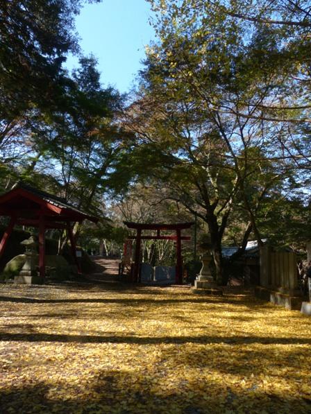 稲荷山公園の紅葉・黄葉 7