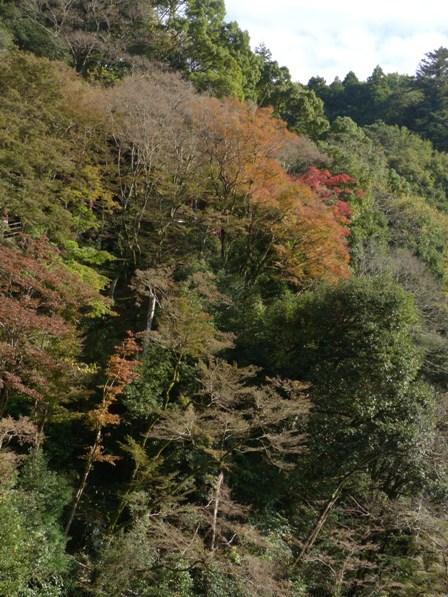 白滝公園 3