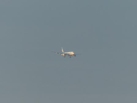 重信川河口から見た 飛行機 1