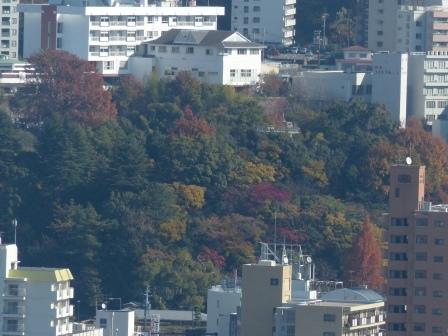 お城山からの眺め 7