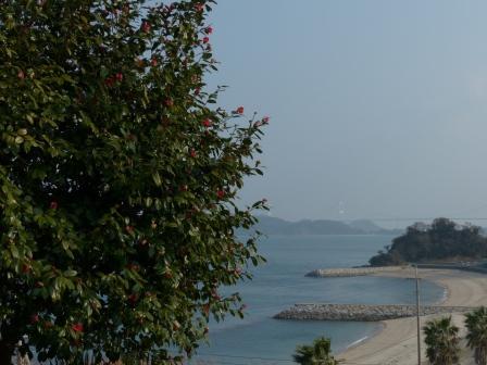 大角海浜公園からの眺め 1