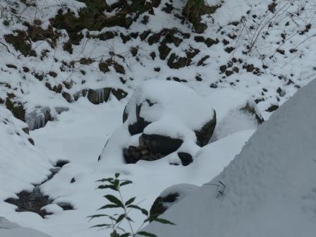 白猪の滝 12