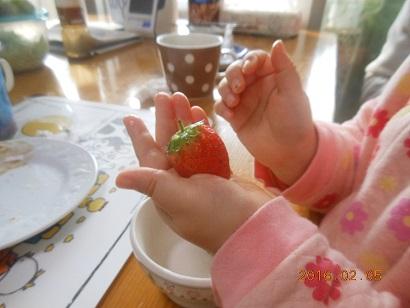 大好きイチゴ