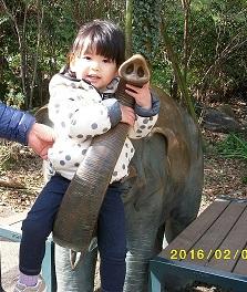 yui動物園にて