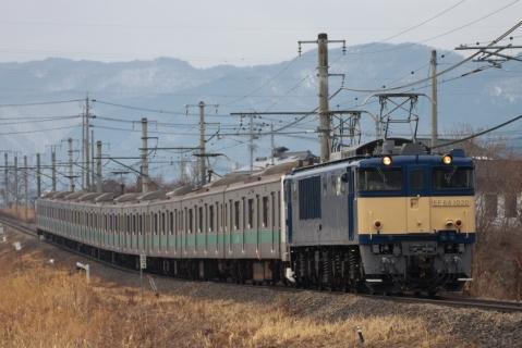 IMG_7536.jpg