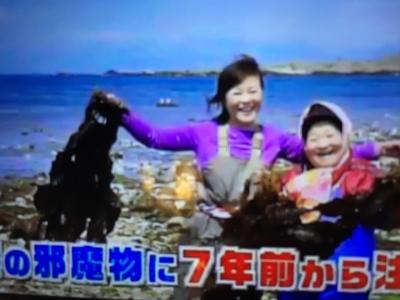つるアラメ昆布テレビ東京_4481