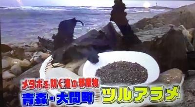 つるアラメ昆布テレビ東京_3224