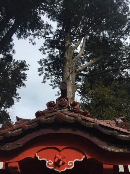 榛名神社 (5)