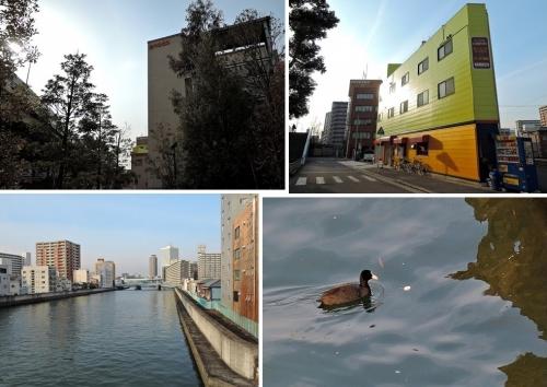 江之子島風景