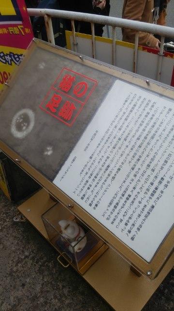 広面② (360x640)