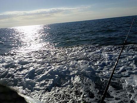 釣り_151220