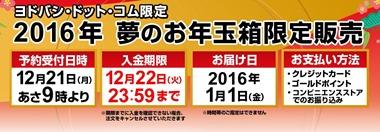 2016_yodobashi