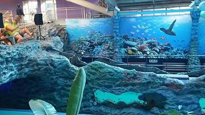 魚と泳げるプール
