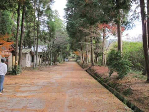 近江の神社 003