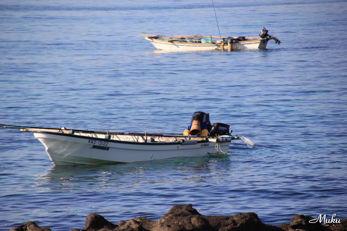 2015.12.28 磯漁