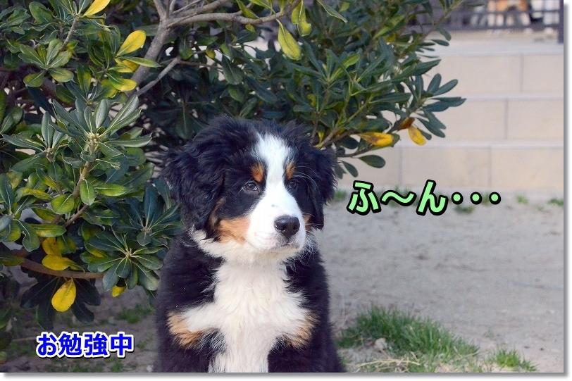 DSC_6969hu~nn